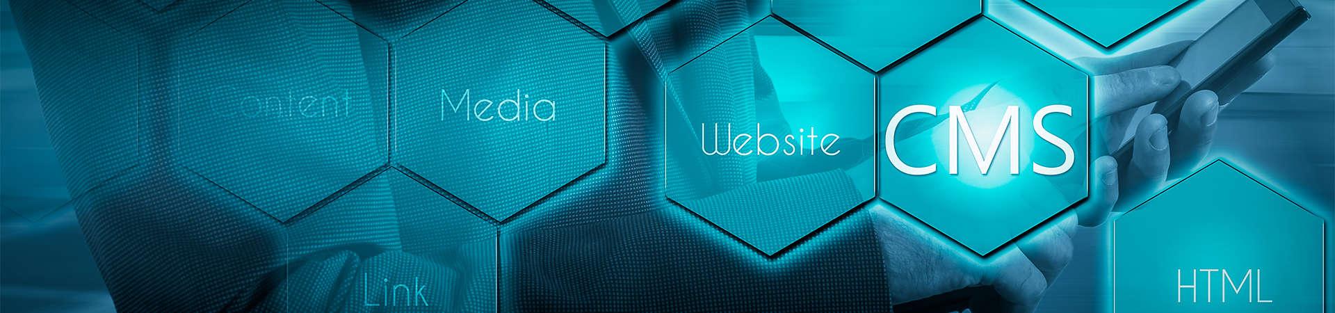 Content Management System Banner